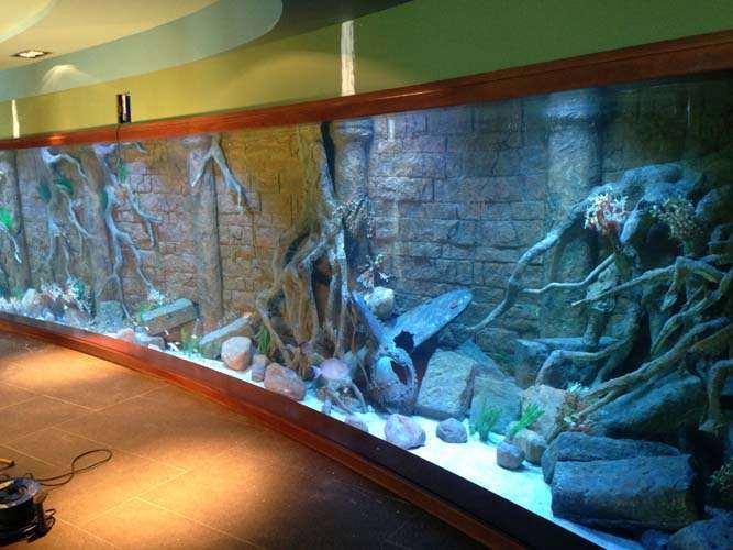Residential Marine Aquarium