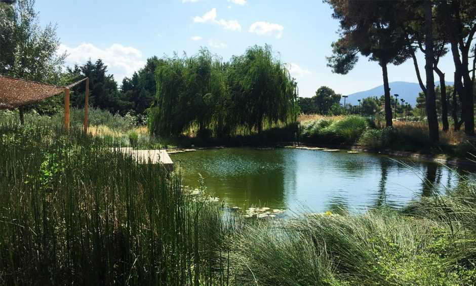 Manufacture and Design of the Tatoi Pond