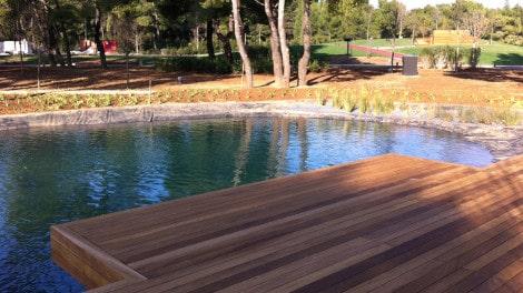 Tatoi Club Pond