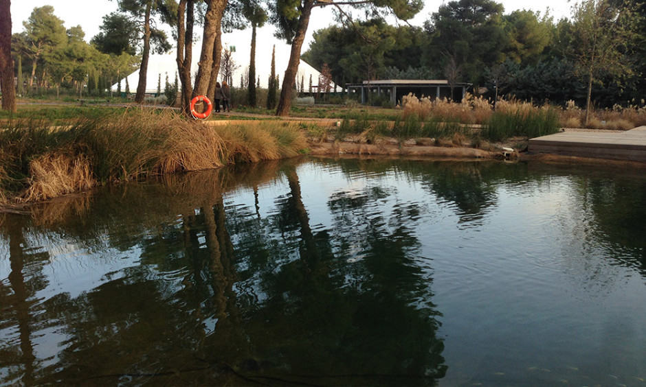 Tatoi Club Pond