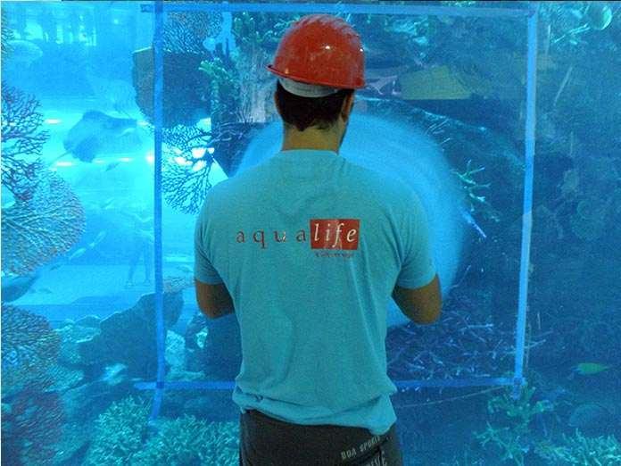 Dubai mall Aquarium acrylic polishing