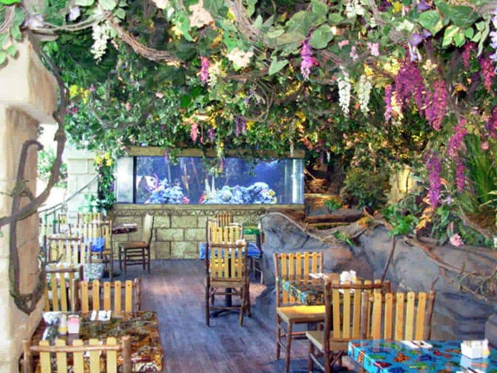 Rainforest Cafe Aquariums - Public Aquaria | AQUALIFE on science cafe, halloween cafe, corner bakery cafe, jungle cafe, zoo cafe, aquarium cafe, blue cafe, vegas cafe, sunrise cafe, sandella's flatbread cafe, hardrock cafe, animal cafe, first hard rock cafe, london cafe, new hard rock cafe, disney cafe, t-rex cafe, island cafe, space cafe, urbane cafe,