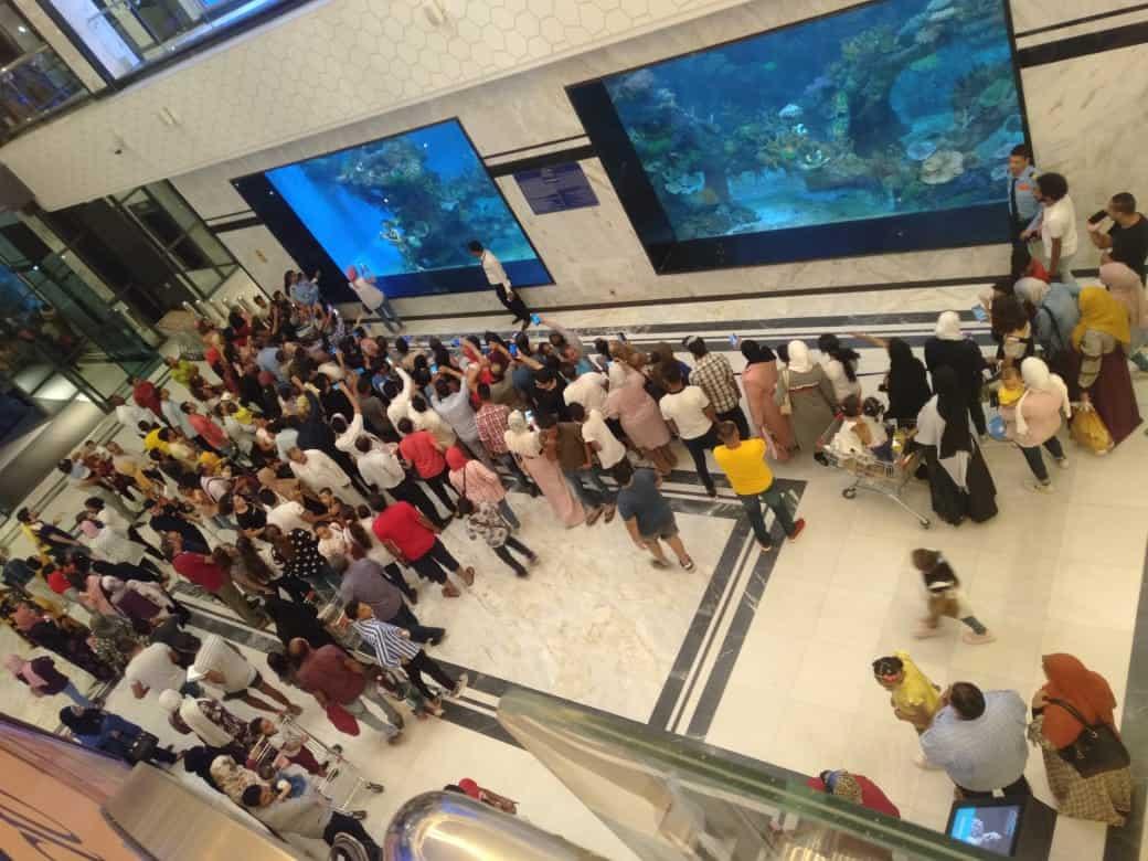 Hurghada City Center Aquarium