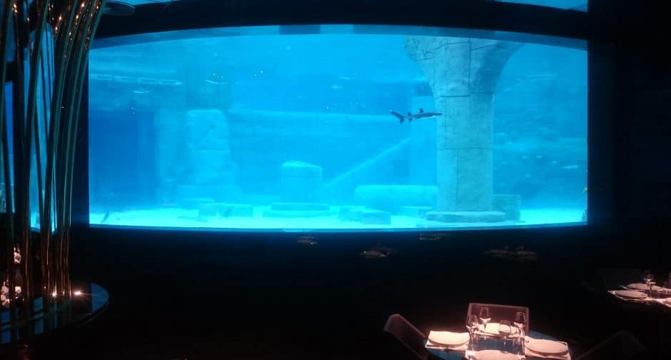 Shark Aquarium in the Land of Legends Theme Park