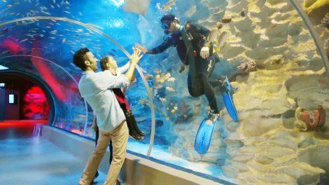 EMAAR Square - EMAAR Aquarium