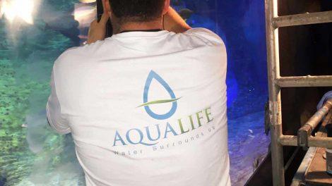 Wroclaw Aquarium Acrylic Buffing - Wroclaw Aquarium Acrylic Buffing