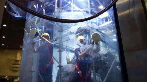Polishing the MEGA Mall Aquarium - Polishing the MEGA Mall Aquarium